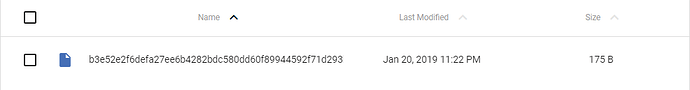 2019-01-21%2010_47_56-Wasabi%20~%20File%20Manager